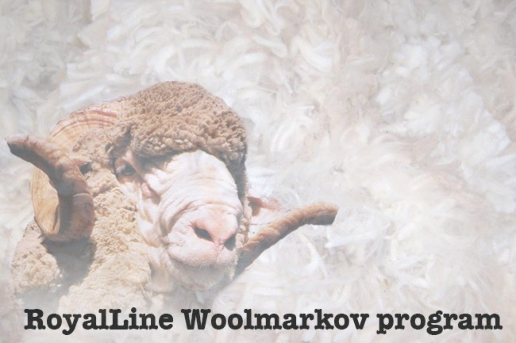 woolmark-royalline-3.jpg